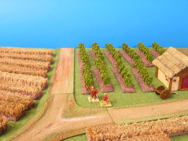 vignes et vignobles DA_vineyard